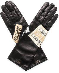 Dolce & Gabbana Logo Patch Gloves - Black