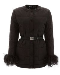 Miu Miu Puffer Jacket With Ostrich Feathers - Black
