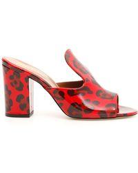 Paris Texas Leopard Mule - Red