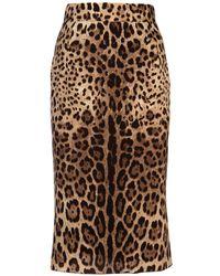 Dolce & Gabbana Leopard-print Skirt - Multicolour
