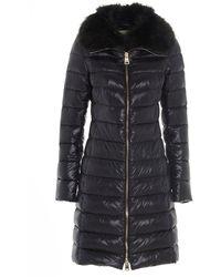 Herno Elisa Fur Trimmed Padded Coat - Black