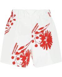 Prada Printed Cotton Shorts - Multicolor