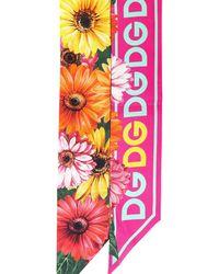 Dolce & Gabbana Gerbera-daisy Printed Scarf - Multicolour