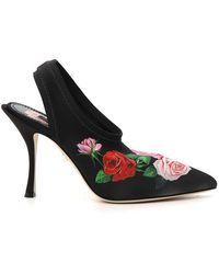 Dolce & Gabbana Rose-print Slingback Mules - Black