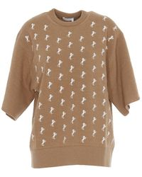 Chloé Horse Embroidered Pullover - Brown