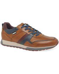 Pikolinos Camber Mens Casual Sneakers - Multicolour