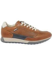 Pikolinos Camino Mens Sneakers - Brown