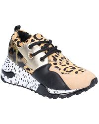 Steve Madden Cliff Lace Up Trainer - Multicolour