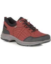 Lotus - Ivaria Womens Casual Trainers - Lyst