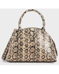Charles & Keith Snake Print Top Handle Dome Bag - Natural