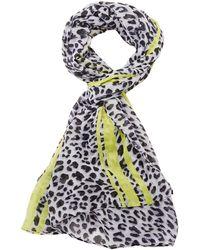 Charlotte Russe - Lightweight Leopard Scarf - Lyst