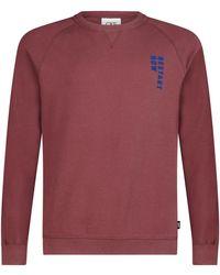 CKS Sweater - Rood