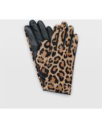 Club Monaco - Claudia Leather Glove - Lyst