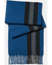COACH Varsity Stripe Scarf - Blue