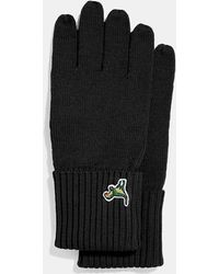 COACH - Knit Tech Rexy Gloves (black) Extreme Cold Weather Gloves - Lyst