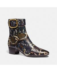 COACH Cassandra Bootie In Snakeskin - Multicolor