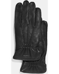 COACH Deerskin Gloves - Black