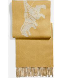 COACH - Cashmere Bicolor Rexy And Carriage Scarf - Lyst