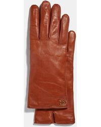COACH Sculpted Signature Leather Touchscreen Gloves - Brown
