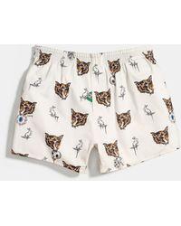 COACH Boxer Shorts - Multicolor