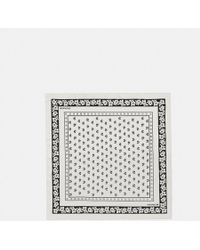 COACH - Lily Of The Valley Bandana - Lyst
