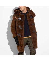 COACH Shearling Mix Duffle Coat - Brown