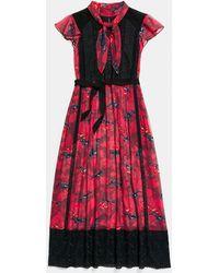 COACH - Horse Print Lacework Dress With Necktie - Lyst