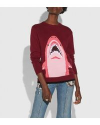 COACH - Sharky Intarsia Sweater - Lyst