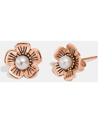 COACH - Freshwater Pearl Tea Rose Earrings - Lyst