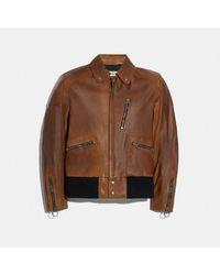 COACH Leather Biker Jacket - Brown