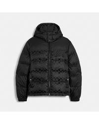 COACH Signature Hooded Puffer Jacket - Black