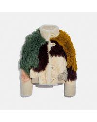 COACH : Blouson en mouton retourné à empiècements - Multicolore