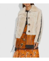 COACH Shearling Leather Coat - Natural