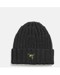 COACH - Rexy Knit Beanie - Lyst