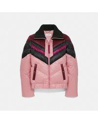 COACH Ski Jacket - Pink