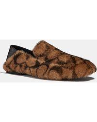 COACH Slipper - Brown