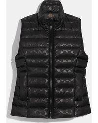 COACH Signature Embossed Short Down Vest - Black