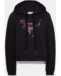 COACH Embroidered Rexy Sweatshirt With Kaffe Fassett Print - Multicolor