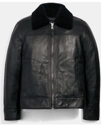 COACH Leather Aviator Jacket With Shearling Collar - Black