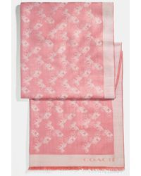 COACH Horse And Carriage Oblong Scarf - Pink