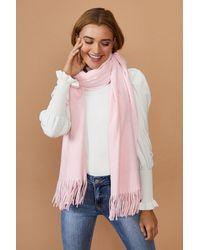 Coast Soft Tassel Scarf - Pink