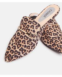 Coast Animal Print Backless Loafers - Multicolour