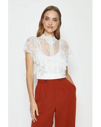 Coast Lace Ruffle Sleeve Top - White
