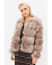 Coast Faux Fur Panelled Jacket Beige - Natural