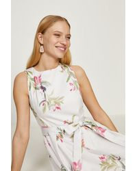 Coast Cotton Fit And Flare Dress - White