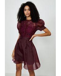 Coast Organza Puff Sleeve Mini Dress - Red