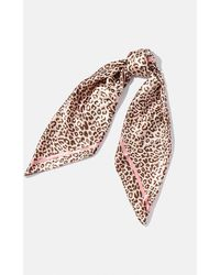 Coast Animal Print Scarf - Pink