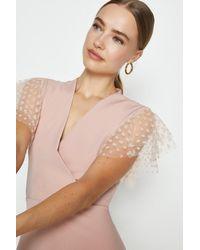 Coast Polka Dot Mesh Short Sleeve Skater Dress - Pink