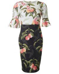 Ted Baker Areea Peach Blossom Fluted Sleeve Dress - Black