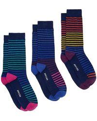Joules Socks & Shares 3 Pack Of Socks - Blue